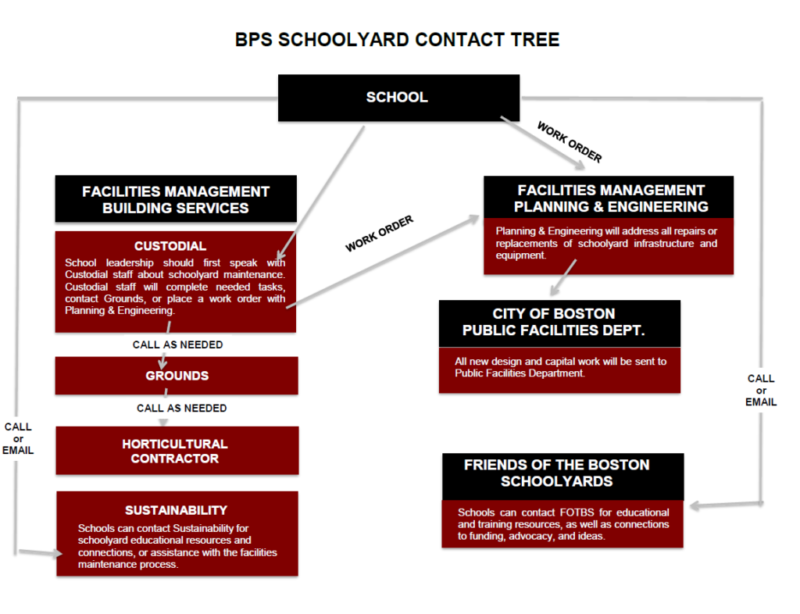 BPS Schoolyards Contact Tree