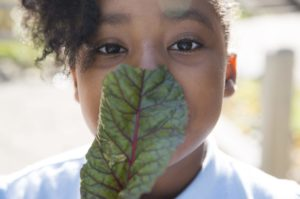 Urban School Gardens: Helping Integrate Nature and Culture